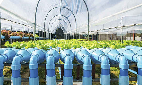 High Purity Water Filtration Systems